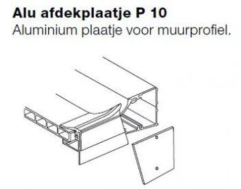 P10 afdekplaatje voor muurprofiel P15